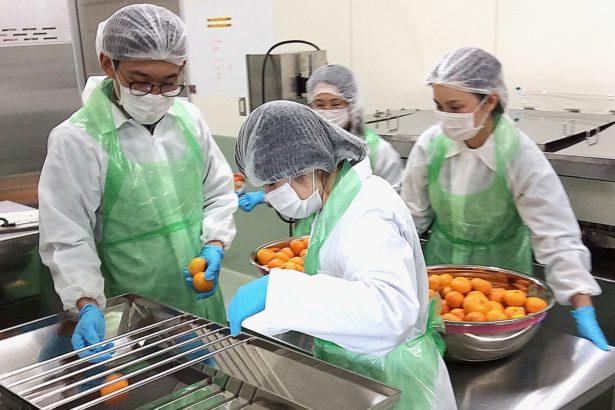 【宮崎務農日記】06來跟政府借廚房!Food Open Lab 高規格支援農家加工