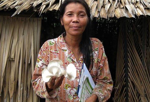 張健芳/柬埔寨餐桌─希望之菇