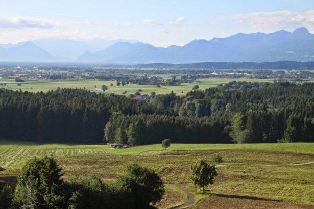 《國土計畫法》通過後 農地農用有望嗎?
