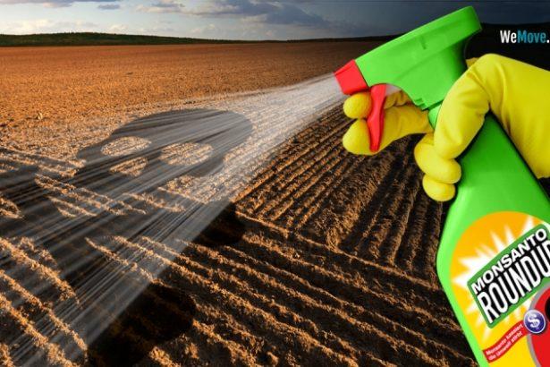 歐盟拼農藥減半不減產,禁用類尼古丁救蜜蜂,百萬連署反嘉磷塞