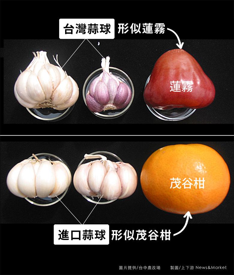 tw-garlic-01-780