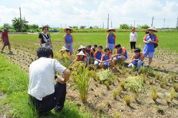 農委會徵求100個食農教育推廣計畫!也徵求食農教材!