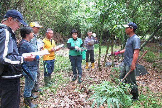 水源乾淨生態豐富,雙溪將成慈心「友善農業示範區」