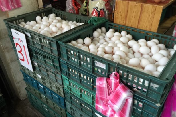 傳統使用的塑膠籃裝蛋