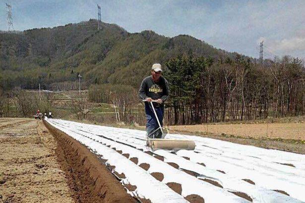 日本移工01/日本國家戰略特區 九月底前開放外國農業勞工