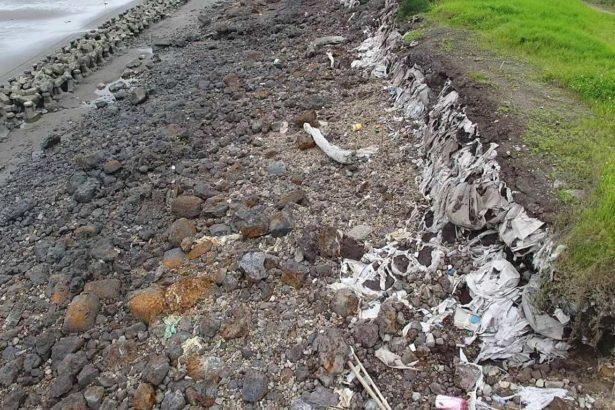 最毒海岸線 集塵灰掩埋新竹沿海 戴奧辛超標2.3倍 鋅超標120倍