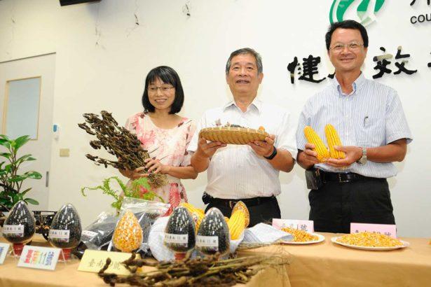 新品種助陣大糧倉 台南11號黑豆 產量高三成 硬質玉米台南29號 吃露水就會長大!