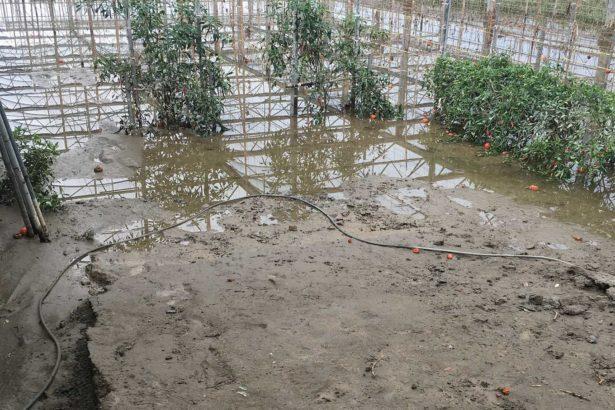 梅雨暫歇 全台農損衝破兩億元 農地流失67公頃