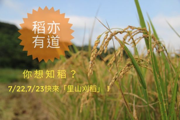 【公民寫手】稻亦有道,你想知稻?快來「里山刈稻」!