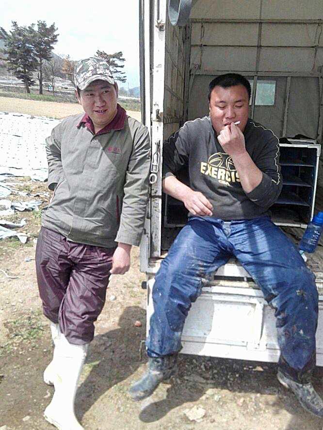 川上村的實習生(照片提供:善興棒)
