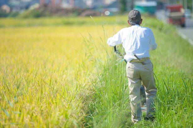 日本移工05/到農村打工沒想像的好 中國工資上揚,日本魅力不再?