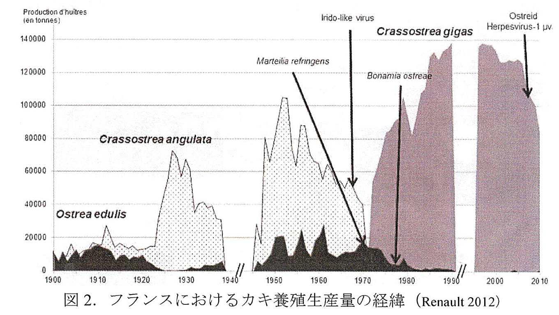 法國養殖牡蠣產量變化(圖片提供/郭金泉)