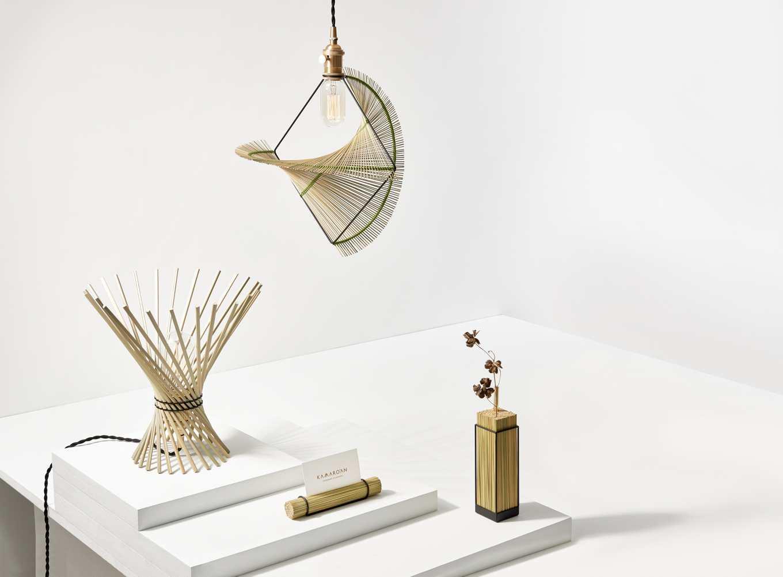 輪傘草系列產品