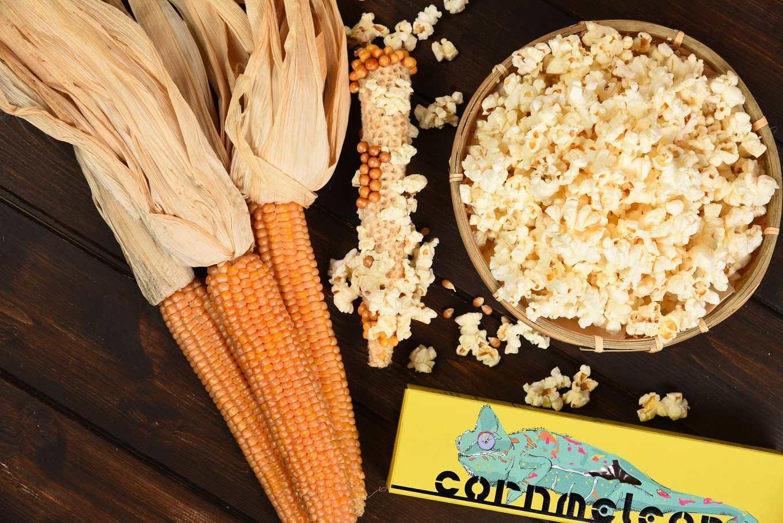 整支玉米帶梗爆玉米花(圖片提供/爆穀文化)