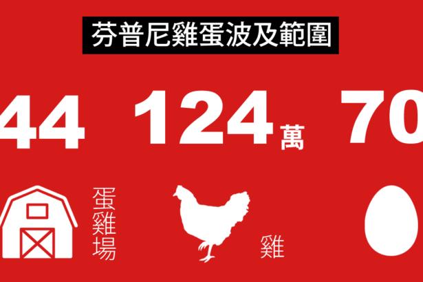全國芬普尼雞蛋檢驗出爐│44家蛋場超標、波及124萬蛋雞、70萬顆雞蛋
