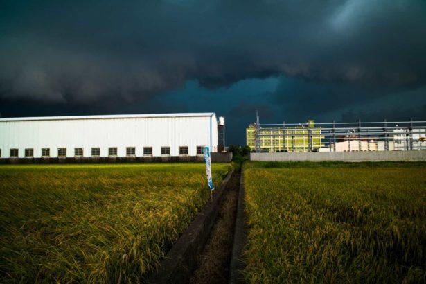 農地工廠問題將列入第一波處理範圍(攝影/張良一)