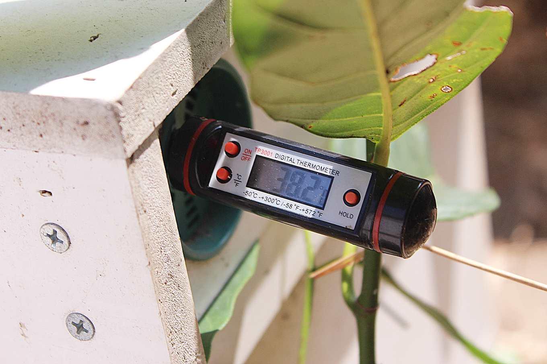 採訪當天,蜂箱溫度38.2度(攝影/賴郁薇)