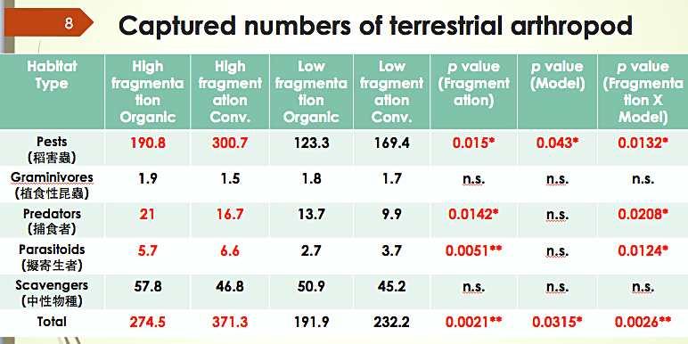 不同田區觀測到的陸生節肢動物數量情況(截自花改場簡報)