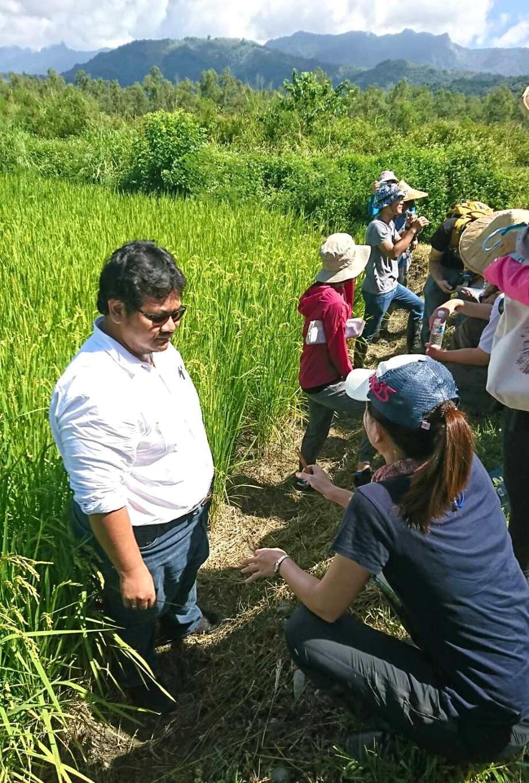 林立助研員與IRRI的Dr. Buyung Hadi於長良試驗田區實地討論本場進行之生態農業試驗(圖片提供/花改場)
