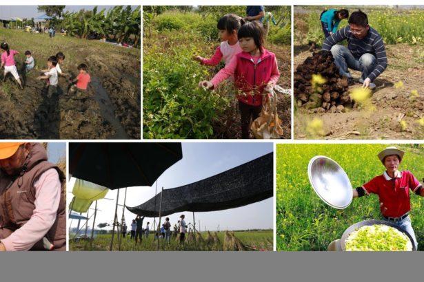 持續四年,追求更深地貼近土地,不斷的發掘田間的事,屬於土地與人的故事