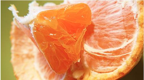 陳興宗/關於柑橘「退酸增甜劑」這件事