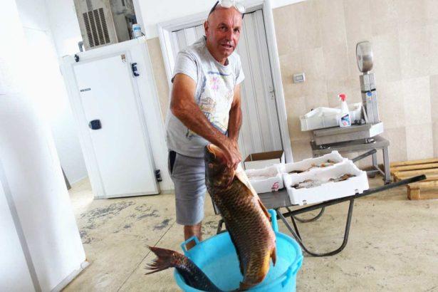 【慢魚串連】義大利湖魚拒絕一網打盡,現代科技保存古老漁法