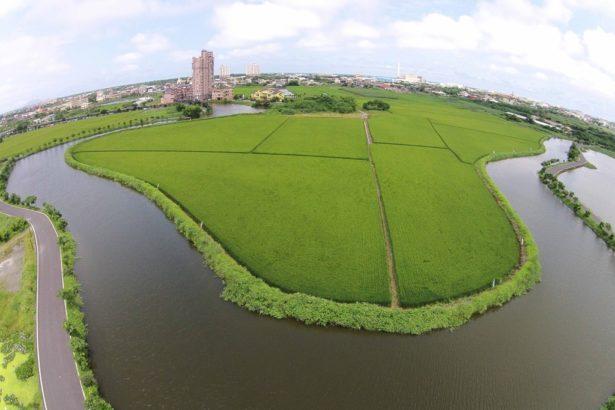 五十二甲濕地照片(圖片提供/荒野保護協會宜蘭分會)
