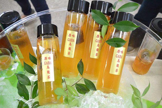 「GABA烏龍茶」可熱沖、冷泡,茶改場希望未來能推出多元商品(攝影/林珮君)