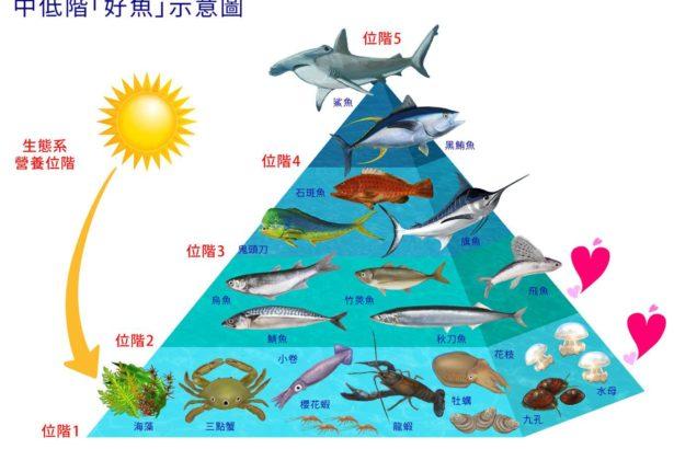 林愛龍/漁道ProFisher 永續海鮮標章如何設計評分制度?│創造台灣永續海鮮標章 03