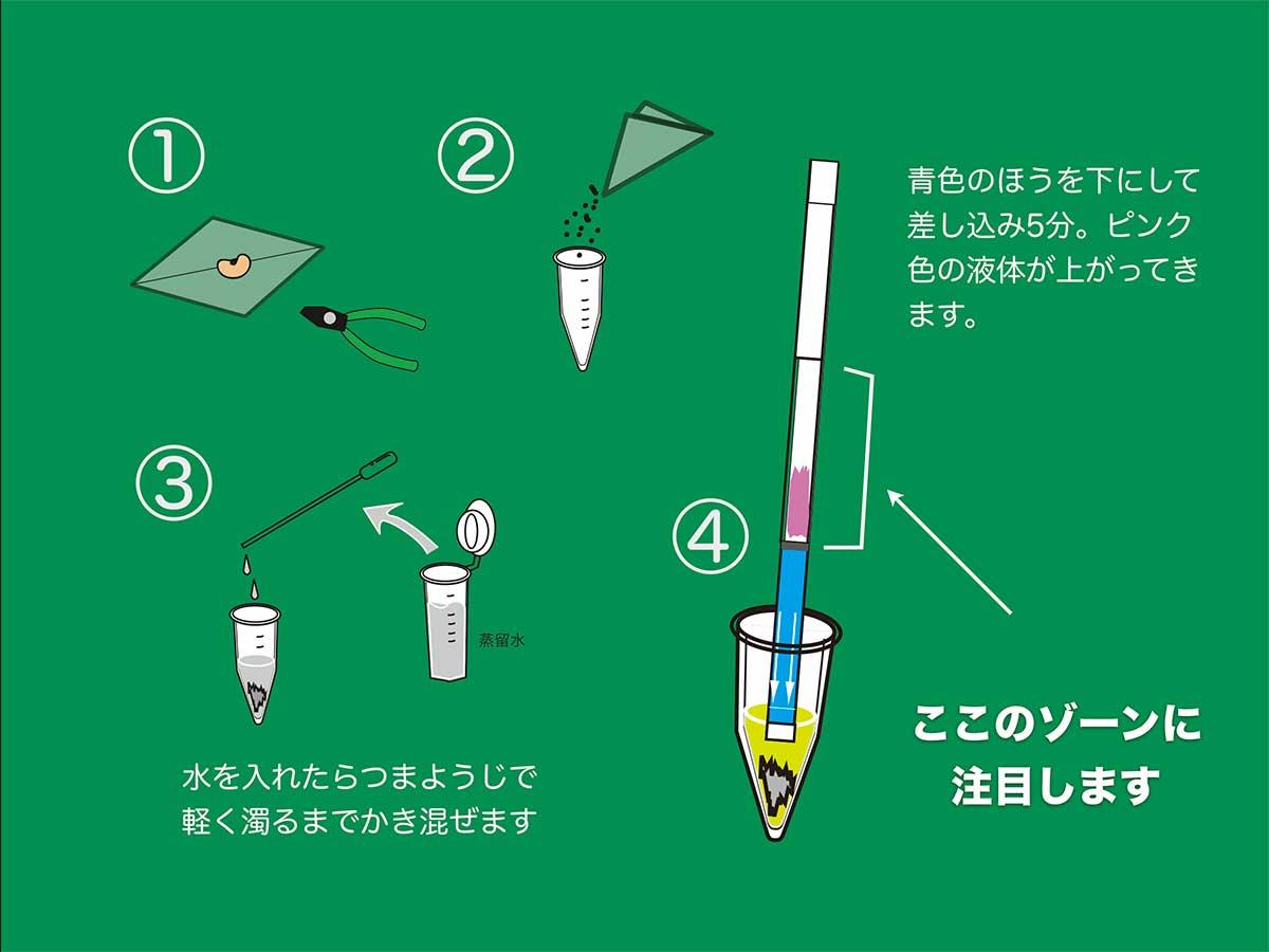 基改試紙操作步驟(八田純人提供)