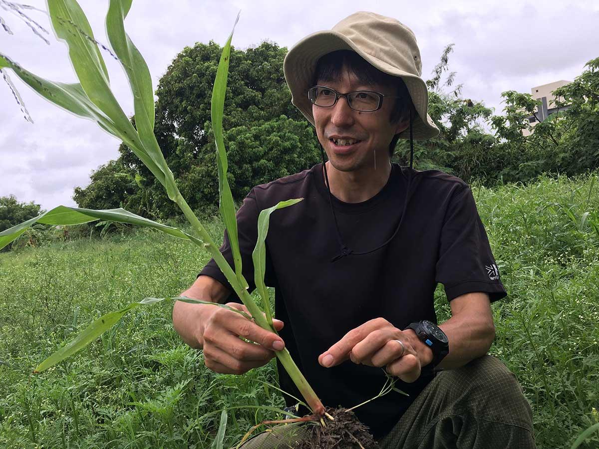 「農民連食品分析中心」所長八田純人發現可疑植株。(攝影/蔡佳珊)