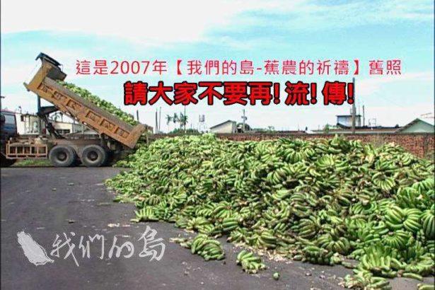 記者還原真相!旗山美濃香蕉「沒有棄置現場」請別流傳傷害農民
