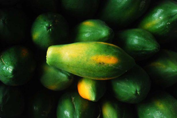 【公民寫手】《透南風。旬味》河畔木瓜的滋味