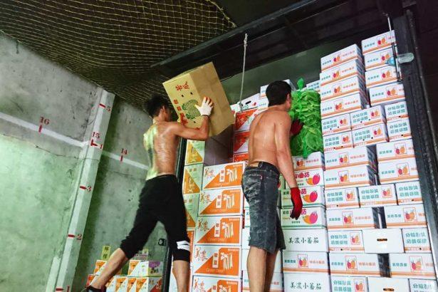 三級農會運銷收代辦費是否合理?農糧署:中華民國農會拿錢不辦事