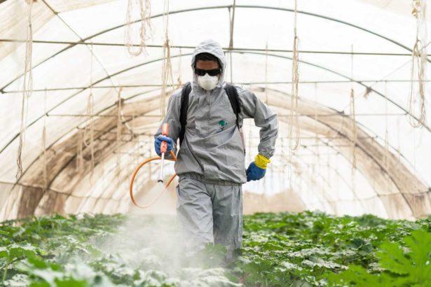 台灣農藥用量創17年新高!美國法院判嘉磷塞賠償天價、保護嬰兒禁用陶斯松,台灣是否跟進?