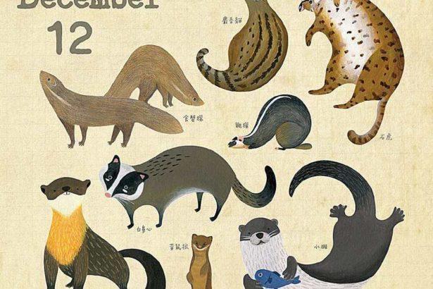 林務局推超可愛《里山動物曆》華山文創「山產店」限量開賣!