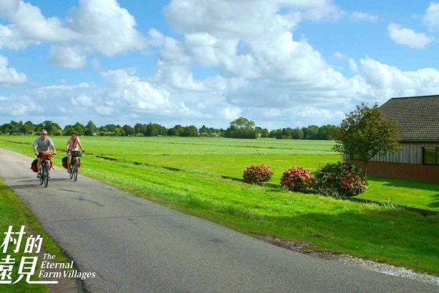 荷蘭綠心(圖片來源/公視)