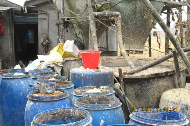 嘉義縣部分養豬場使用廚餘餵食。(照片提供/嘉義縣農業處畜產科)
