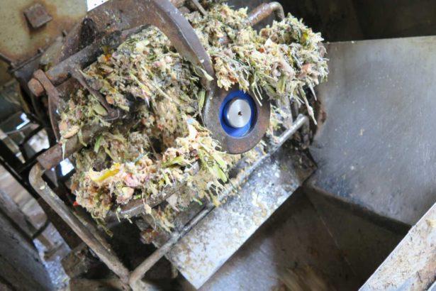新竹縣廚餘除養豬外,也送進堆肥場