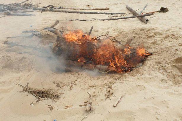 8日於金門金城鎮沙灘上發現的染疫海漂豬屍,就地焚燒處理。(照片提供/金門縣政府)
