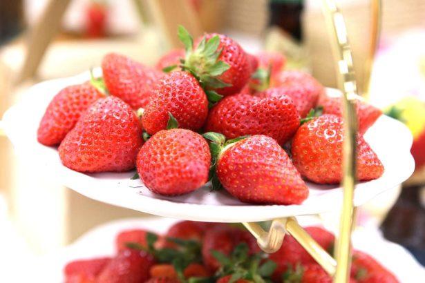 戀香草莓(攝影/上下游)