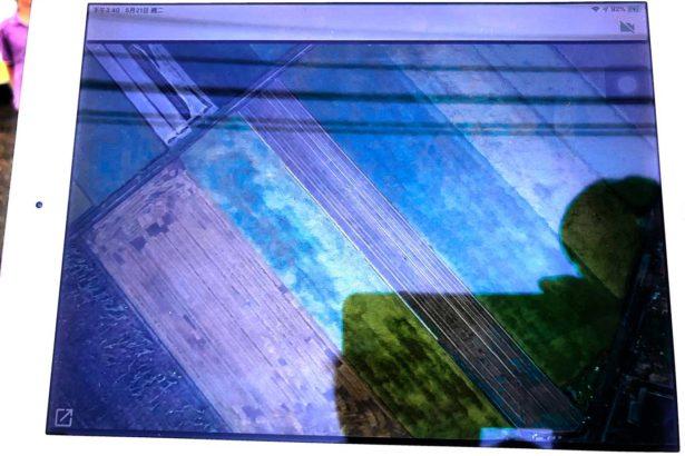 螢幕上兩塊綠色區域為水稻田,深色部分為倒伏區域,因應勘災工作,其準確率和效率的確比人工高(攝影/李慧宜)