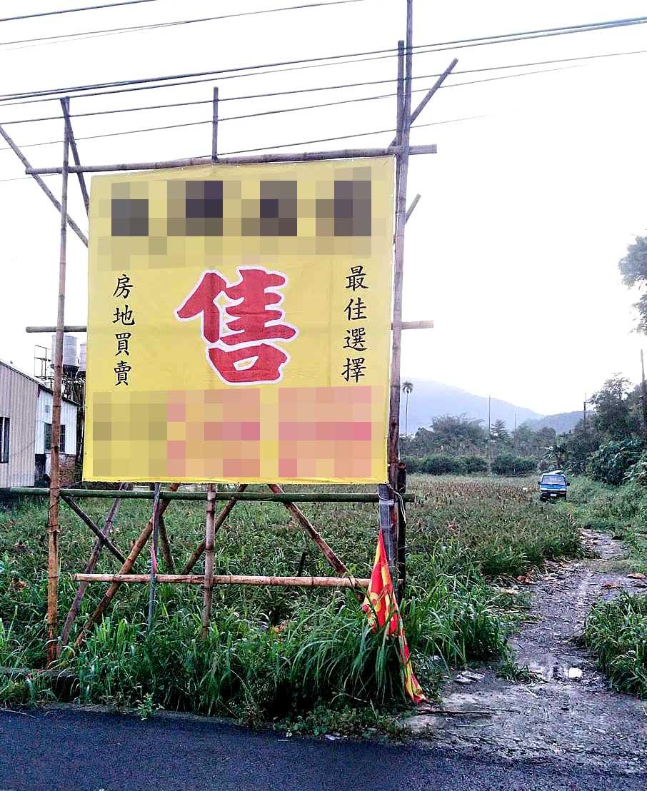 阿源鳳梨田旁豎起大大的售字,擔心又得重新找地重種(圖片提供/阿源)