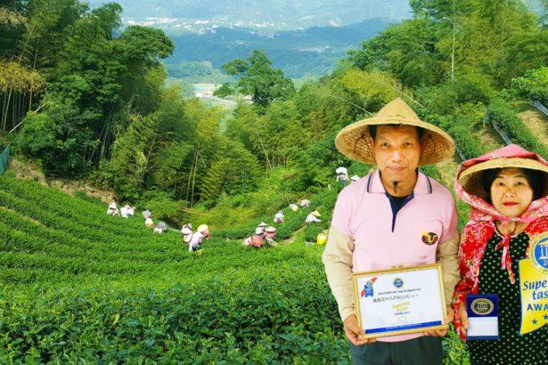 【公民寫手】台灣首位有機茶農 勇奪比利時「iTqi食品界米其林最高等級3星獎」