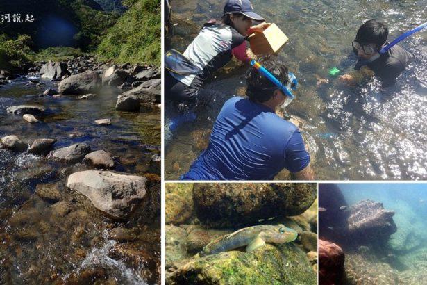 【公民寫手】大人的暑修–東北角溪流生態與河相踏查日
