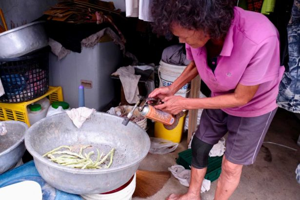 居民家家自備噴槍用來燒死琉璃蟻(攝影/蔡佳珊)