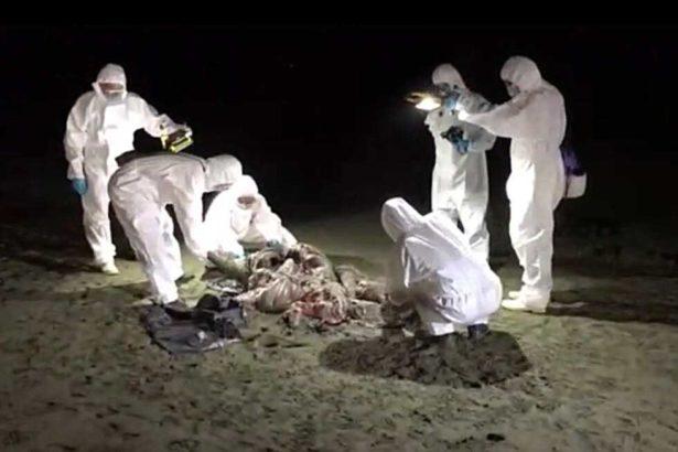 0904非洲豬瘟》中秋戰役吃緊,含肉月餅闖關大增,越南肉品3成驗出病毒