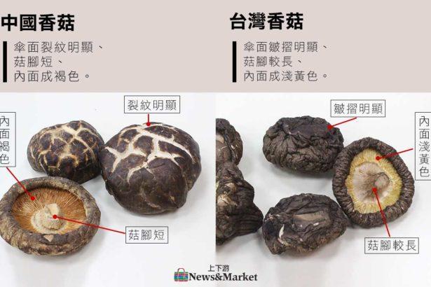 (影片教學)如何分辨台灣/中國走私香菇?菇味很濃是好香菇嗎?