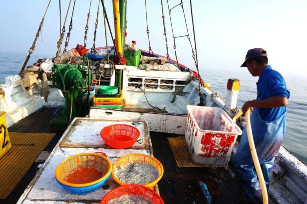 目前漁民漁工作業時幾乎未著救生衣(上下游資料照)