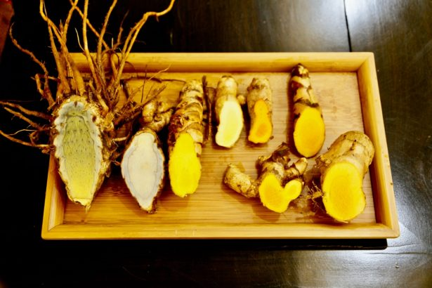 不同薑黃,由左至右為:蓬莪朮、紫鬱金、春鬱金、芒果薑黃、紅薑黃 、皇金薑黃、秋薑黃、束骨薑黃(攝影_林怡均)